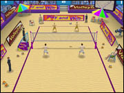 Summer Sports Beach Volleyball