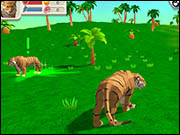 Tiger Simulation